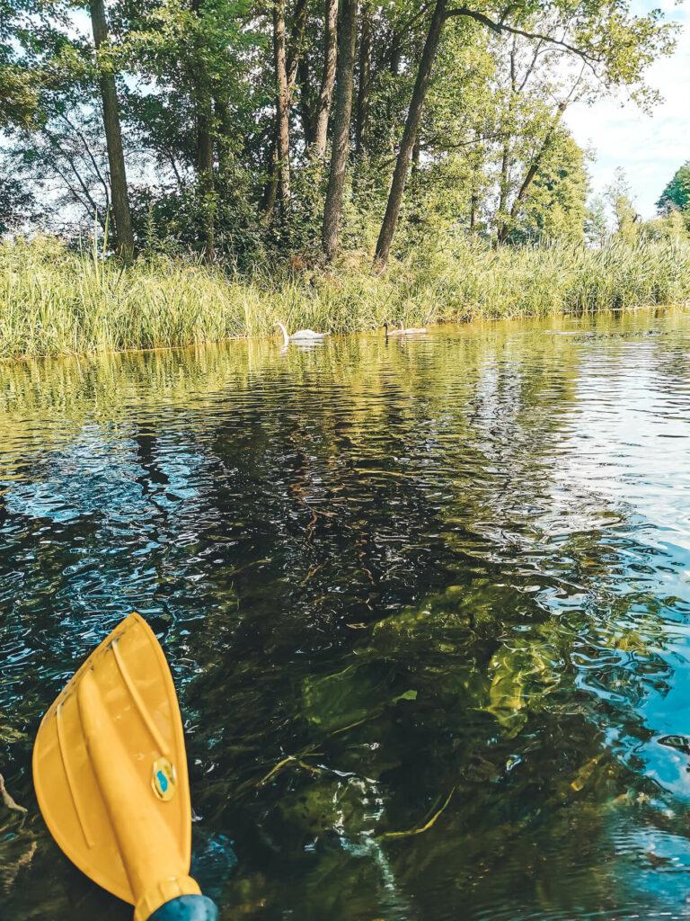 Spływ kajakowy Krutynią, Mazury